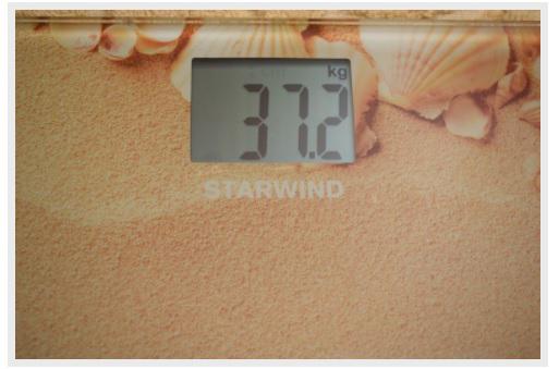 весы STARWIND SSP2359